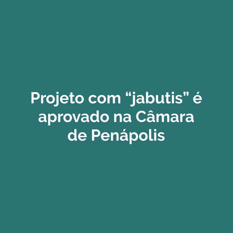 """Projeto com """"jabutis"""" é aprovado na Câmara de Penápolis"""